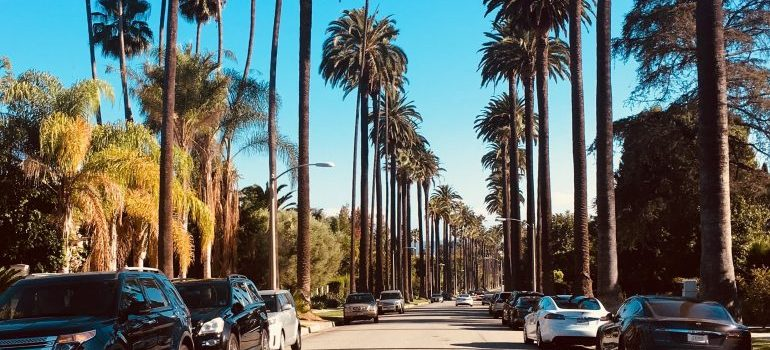 Road of the most luxurious places in Beverly Hills