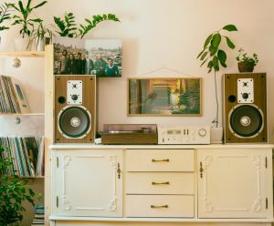 a room with furniture, wooden speakers, a lot of plants, and pictures